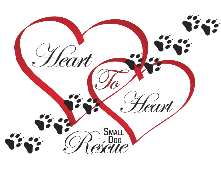 Heart to Heart Small Dog Rescue