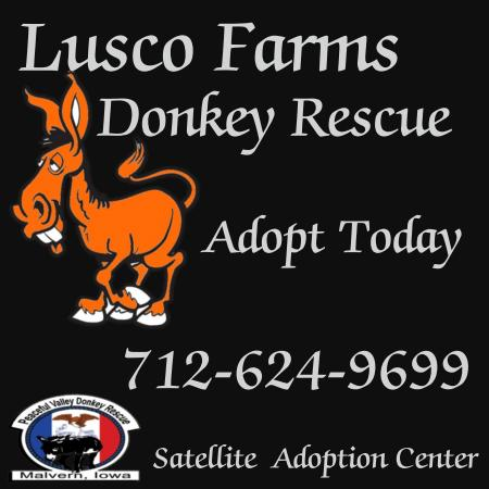 Lusco Farms Rescue