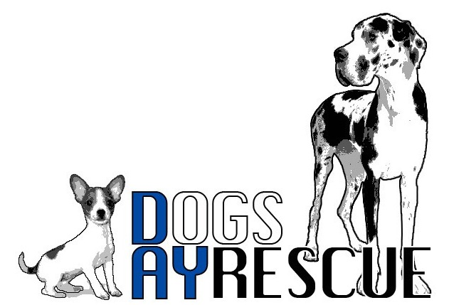 A Dog's Day Rescue