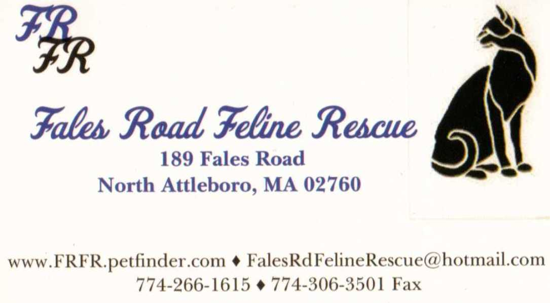 Fales Road Feline Rescue