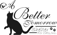 A Better Tomorrow Shelter For Cats, Inc