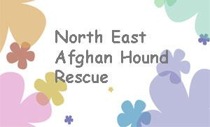 North East Afghan Hound Rescue, Inc
