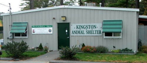 Kingston Animal Control/Shelter