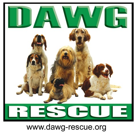 Best DAWG Rescue Inc.