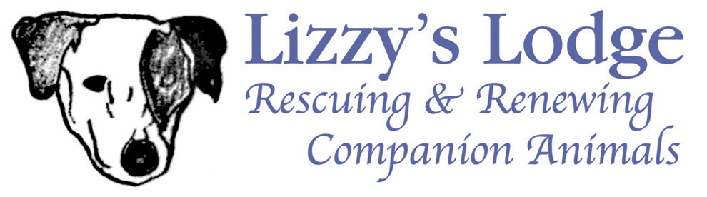 Lizzys Lodge