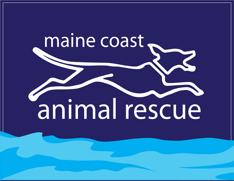 Maine Coast Animal Rescue At Blake Vet