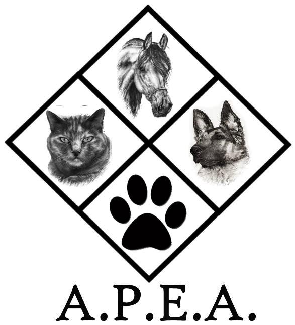 Animal Protection and Education Association, Inc.