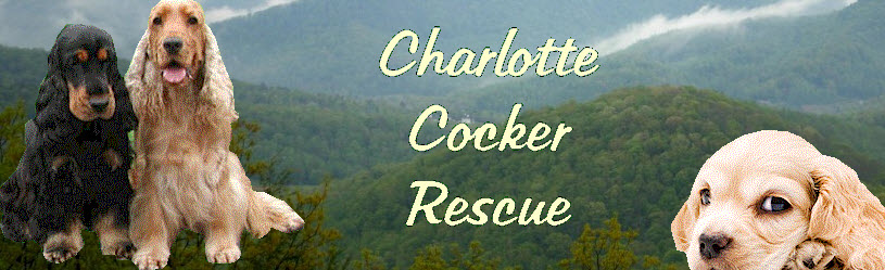 Charlotte Cocker Rescue of NC, Inc