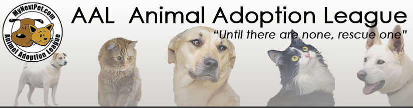 Animal Adoption League