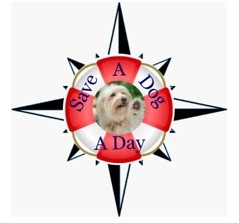 Save a Dog a Day - North Carolina