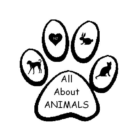 All About Animals NJ