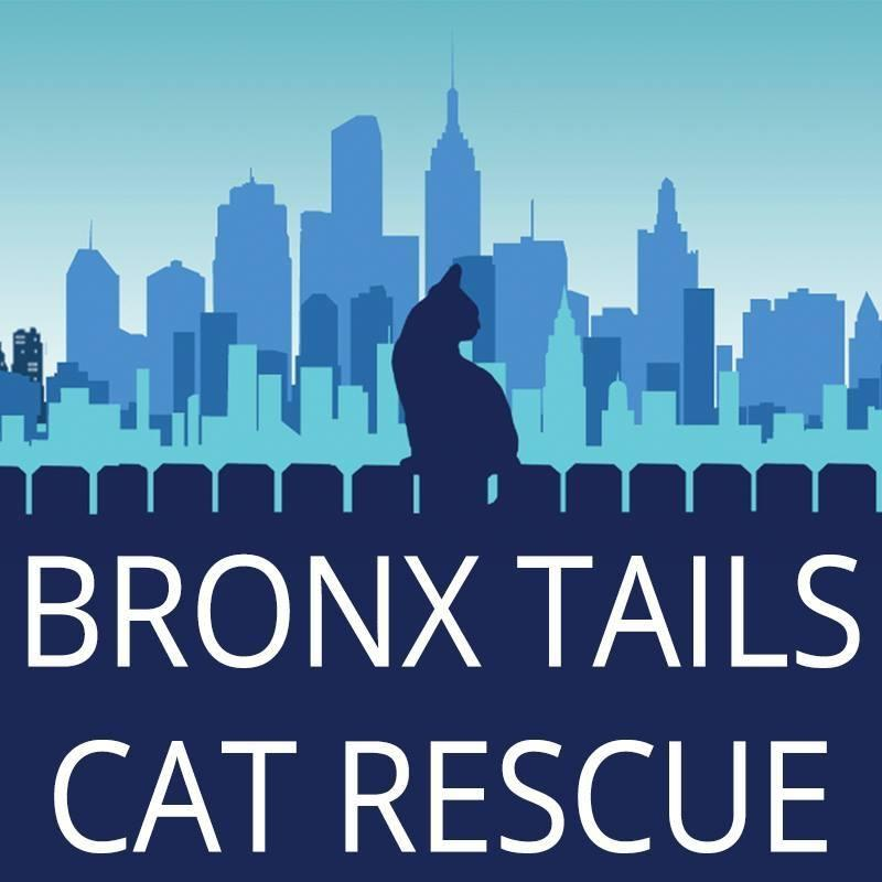 Bronx Tails Cat Rescue