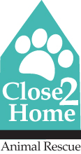 Close to Home Animal Rescue