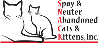 Spay/Neuter Abandoned Cats & Kittens