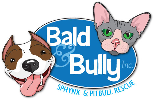 Bald and Bully, Inc.