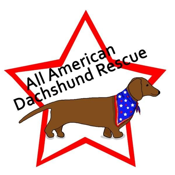 All American Dachshund Rescue of New England