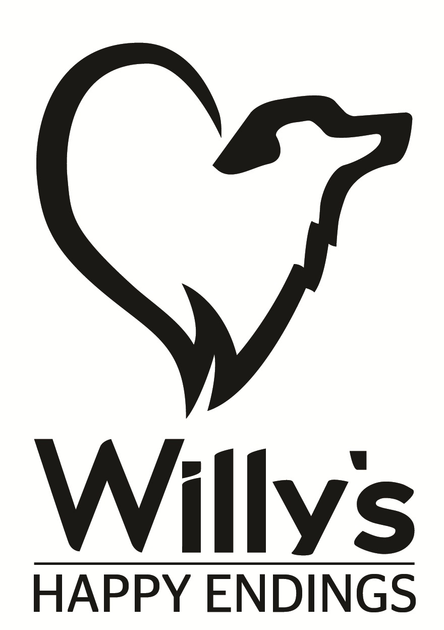 Willy's Happy Endings