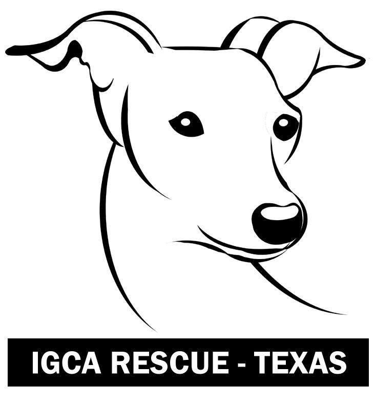 IGCA Rescue of Texas