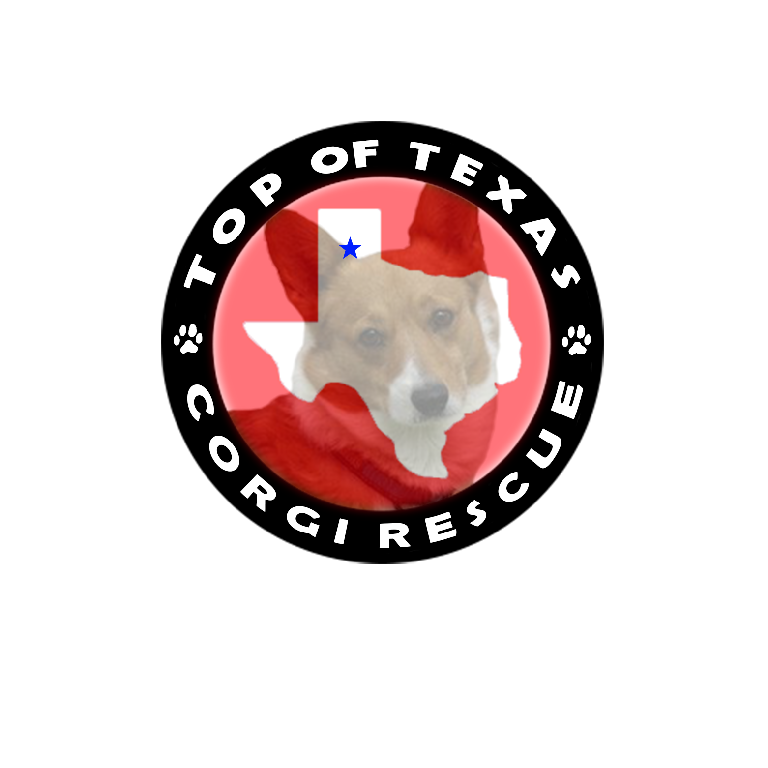 Top of Texas Corgi Rescue