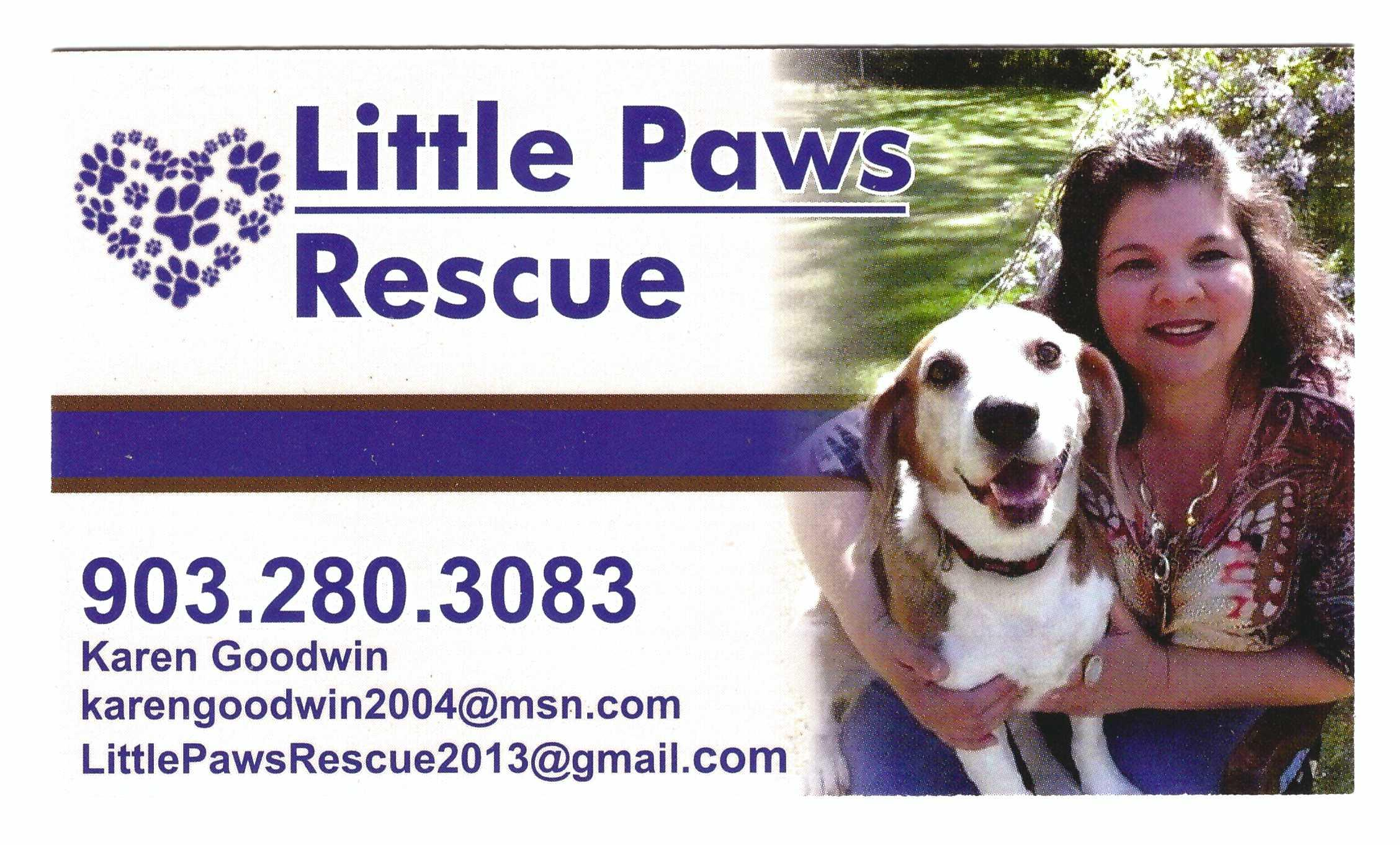 Little Paws Rescue