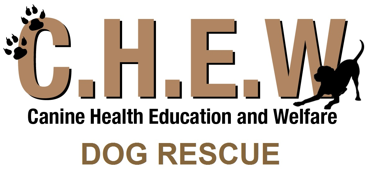CHEW Dog Rescue - Canine Health Education and Welfare