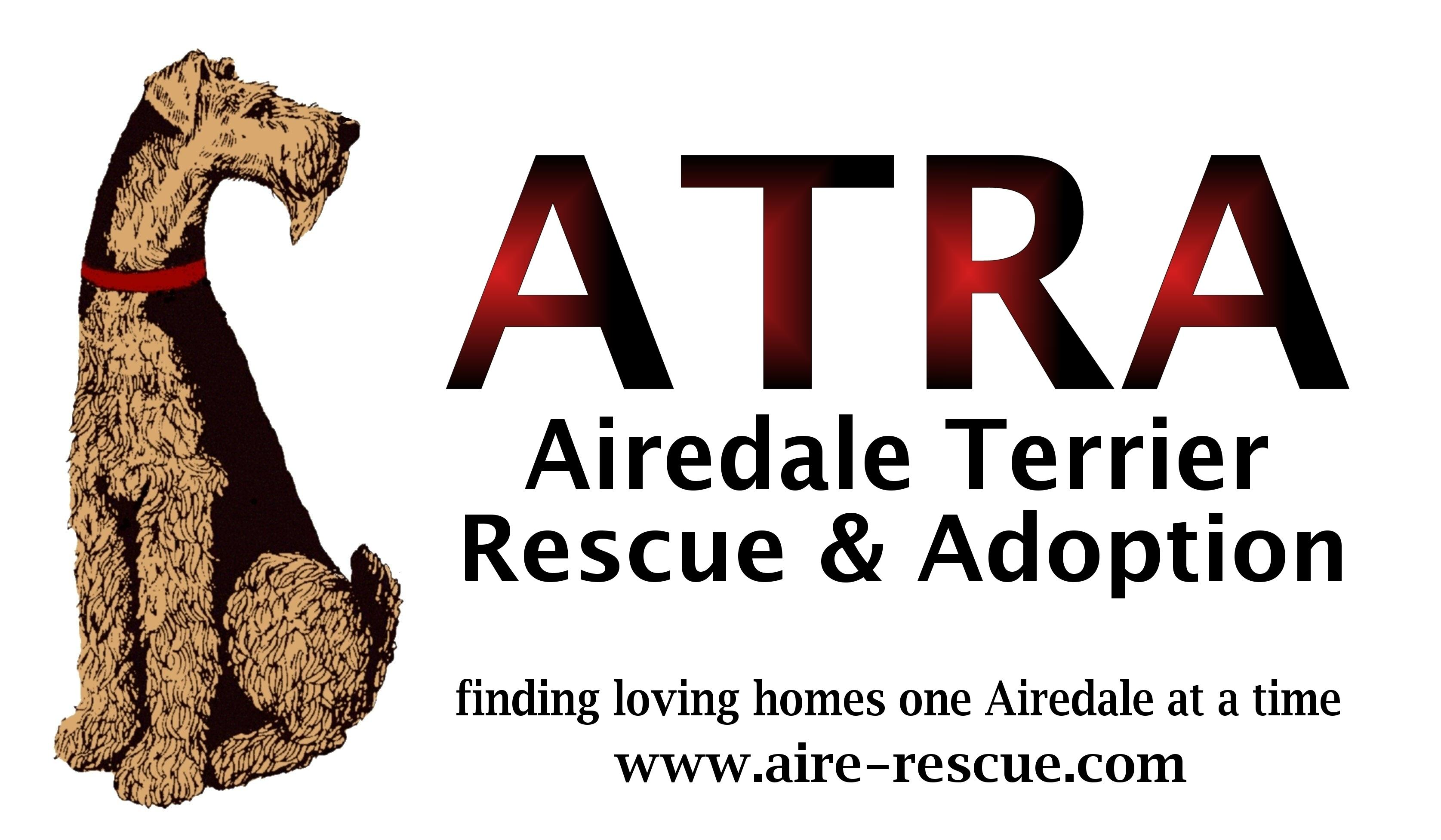 Airedale Terrier Rescue & Adoption