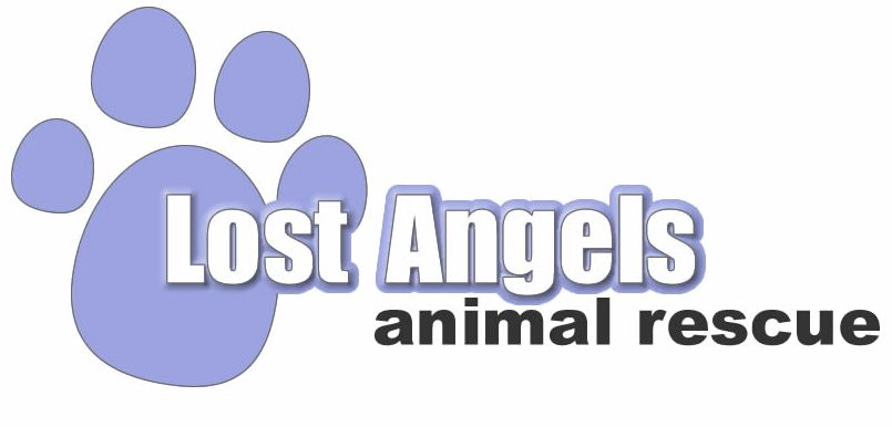 Lost Angels Rescue, Inc